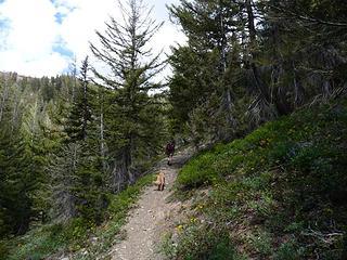 Brown hikes are back!!!! Yaaaaaa!!!!