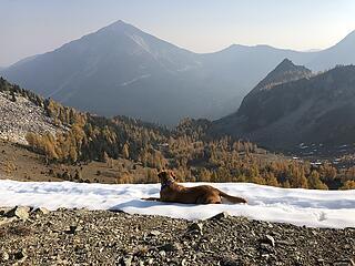 On top of Gray Peak - Cooper eyeing Oval Peak
