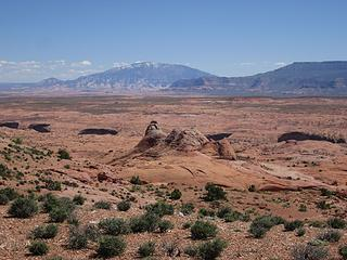 Navaho Mtn over Coyote Gulch