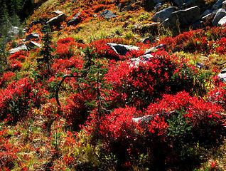 Meadow Garden arrangement 2