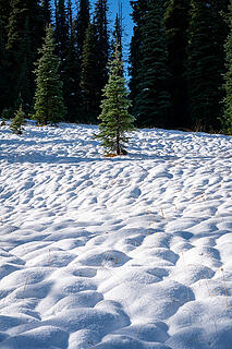 Pillows of snow
