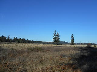 West Rocky Prairie Wildlife Area 012421 08