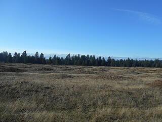 West Rocky Prairie Wildlife Area 012421 42