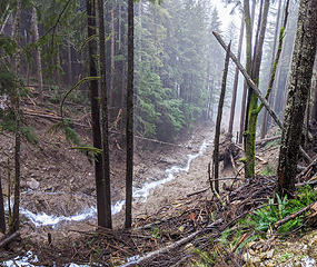 View downstream from the waterfall crossing. The slopes are steeper here and the gorge is deeper.  Map: location 5