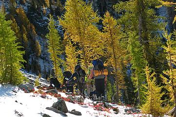 Hiking with larches 2