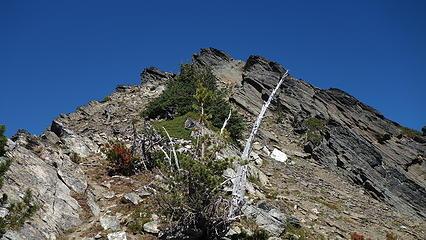 At the ridge