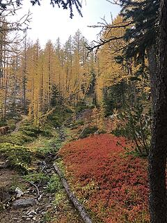 More color on the way to Fish Creek Pass