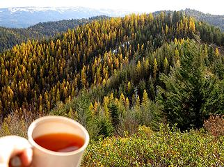 Summit Tea with Larches