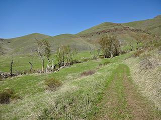 Green Gulch Trail.