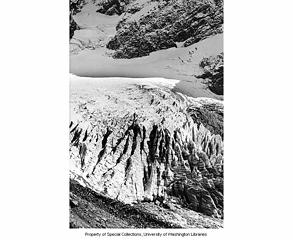 Lower Curtis Glacier 1951