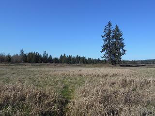West Rocky Prairie Wildlife Area 022020 08
