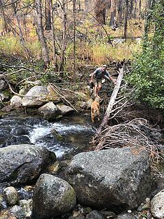 Crossing West Fork of Buttermilk Creek