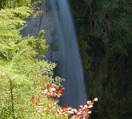 Denman falls