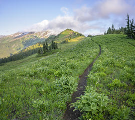 White Pass - Glacier Peak Wilderness