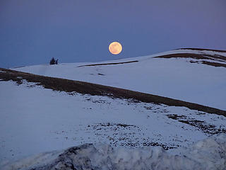 Super worm moon rising over the Palouse hills.