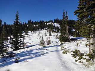 The summit is beyond the trees ahead.