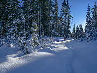 This is really fun snowshoeing . . .