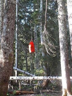 Nice setup for hanging food at Low Divide