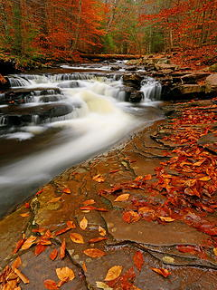 Ricketts Glen, Pennsylvania
