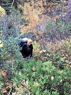 Steve in pushing trail brush
