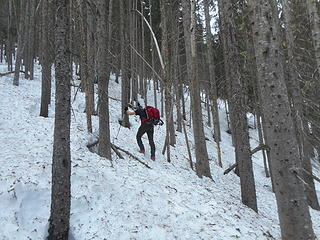 Neil ascending the forested slope