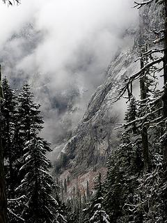 Glimpses of icy cliffs through the forest