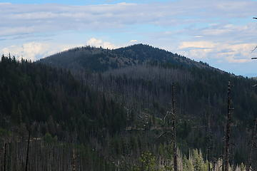 Muckamuck from FS37 east of Baldy Pass