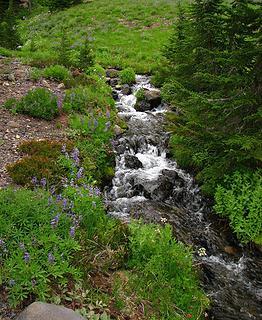 """Camp"" creek"