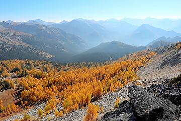 Larches and peaks stretching southward