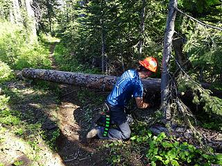 Bucking logs on the Mount Misery trail to Oregon Butte. We logged out 13 miles clearing 113 trees.