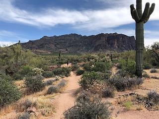 Superstition Wilderness 4/9/19
