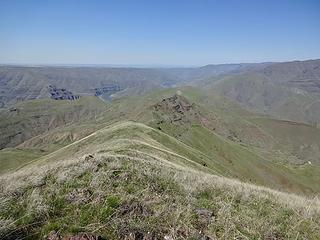 There is one more peak called Lime Hill to do on this ridge but I'll save that for another trip later. It's the rounded bump after the point with a steep east face. Views of the confluence of the Grande Ronde and Snake are said to be good from there.