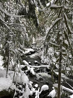South Fork Wallace River 1/16/20