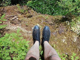 shoe shot - Upper Crossing Way Trail - Queets Valley 080917