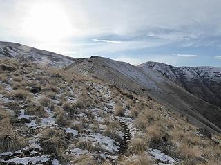 A pretty good trail on the ridge.