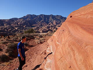 Darker orange Page Sandstone layer just below the dark red Carmel caprock