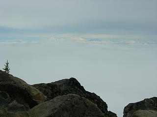 Summit-Mt Rainier between the cloud layers