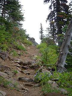 Trail to viewpoint