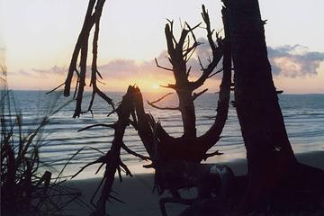 sunset-kalaloch-0706