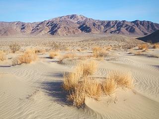 minor sand dunes