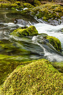 Big Quilcene River 2
