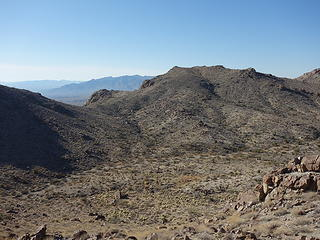 Cholla forest below Center Benchmark.
