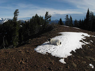 Yes Angry Hiker, I found another snowpatch