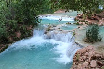 Ponds near Havasu Falls