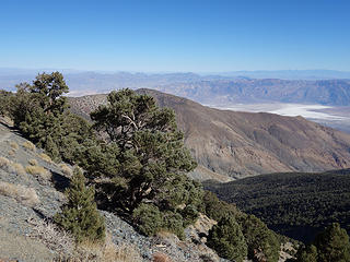Badwater from trail