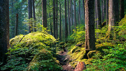 The Brothers Wilderness, Olympic National Forest