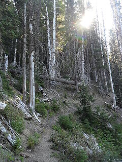 trail nearing the upper basin