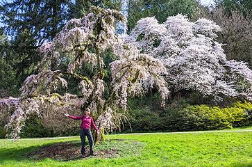 Seattle Arboretum walk