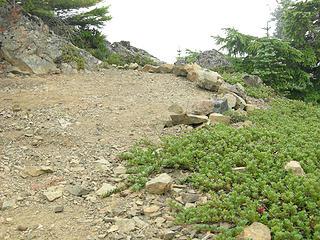 Great camping spot just below summit
