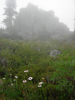 Cliffs and wildflowers 4800 ft/6.3 mi